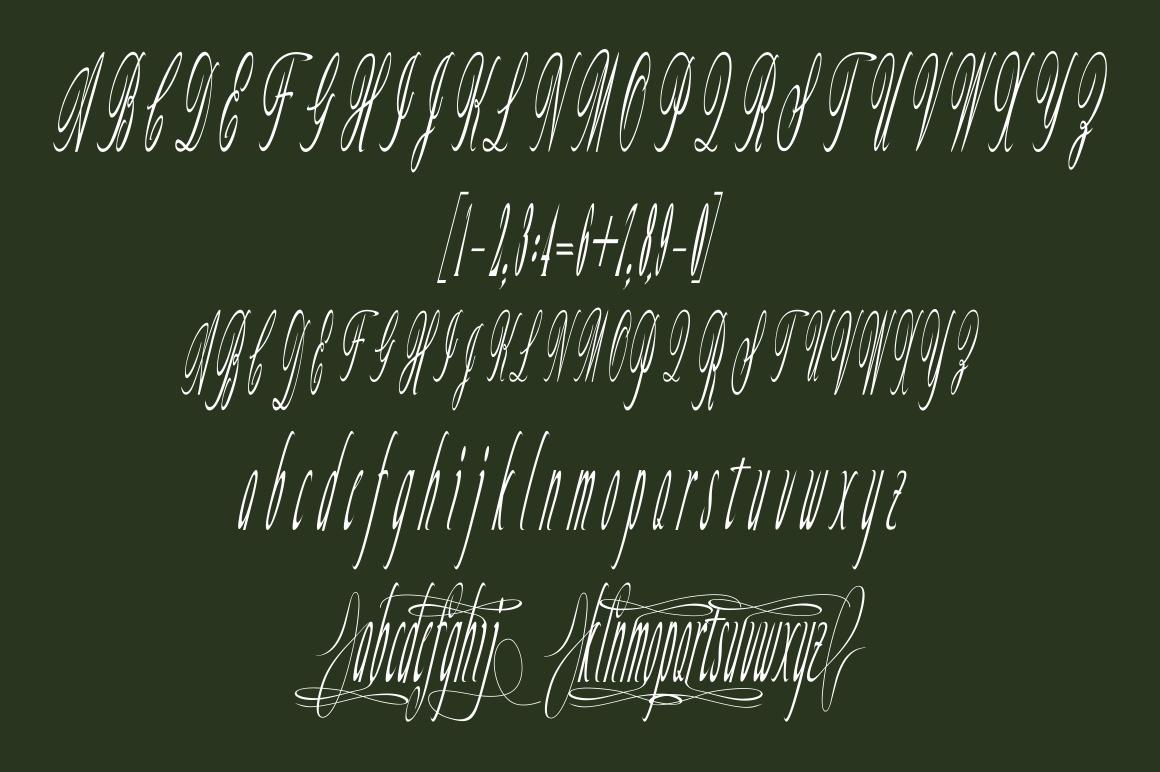 Willona Script example image 5