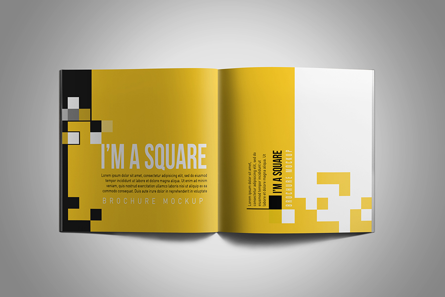 Square Brochure Mockup example image 6
