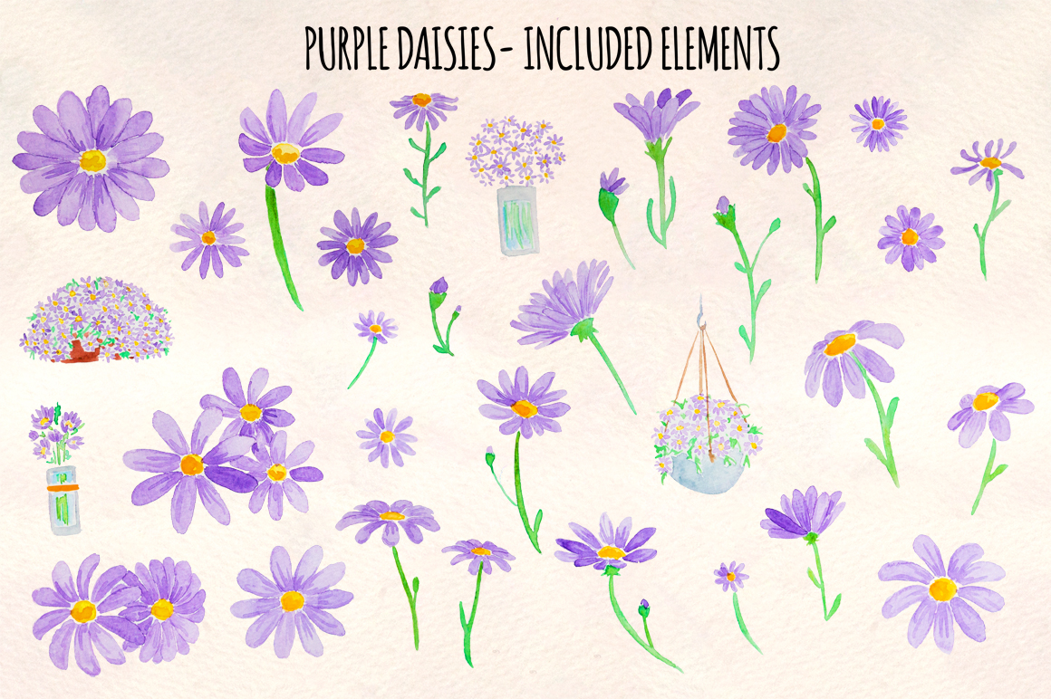 Purple Spring Daisies 32 Watercolor Elements example image 2