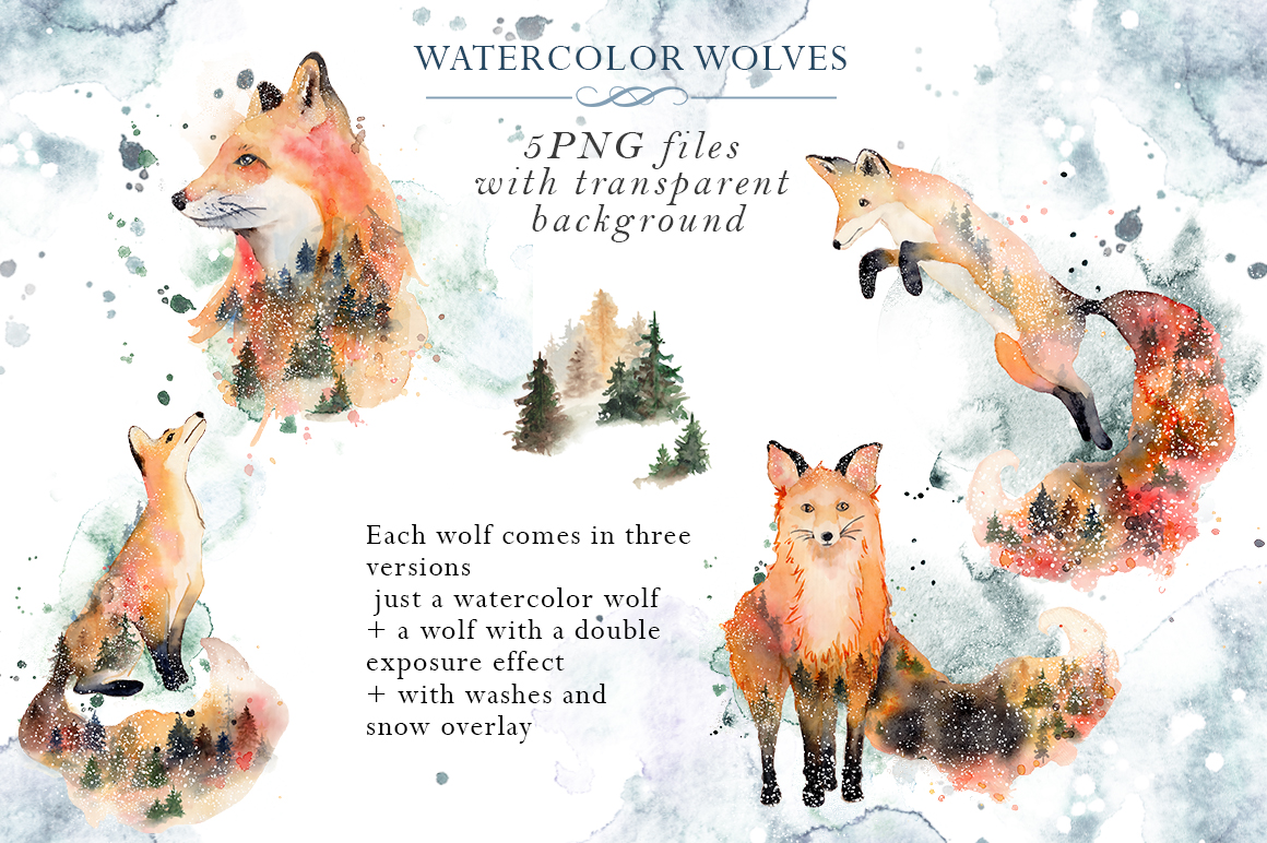 Woodland story Vol.2 Foxes example image 3