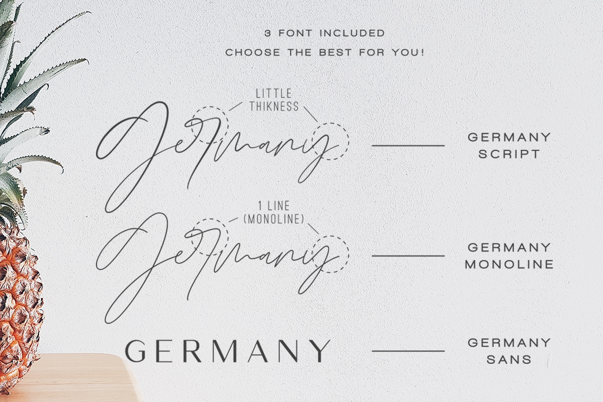 Germany - Luxury Font Duo example image 8