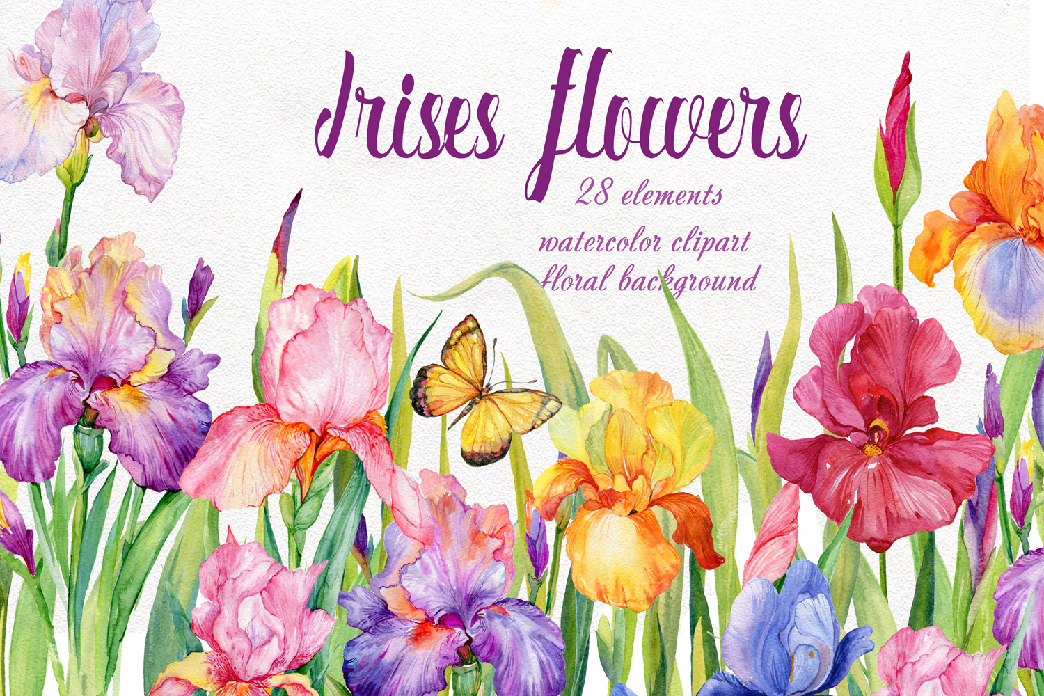 iris flowers. watercolor clipart example image 1