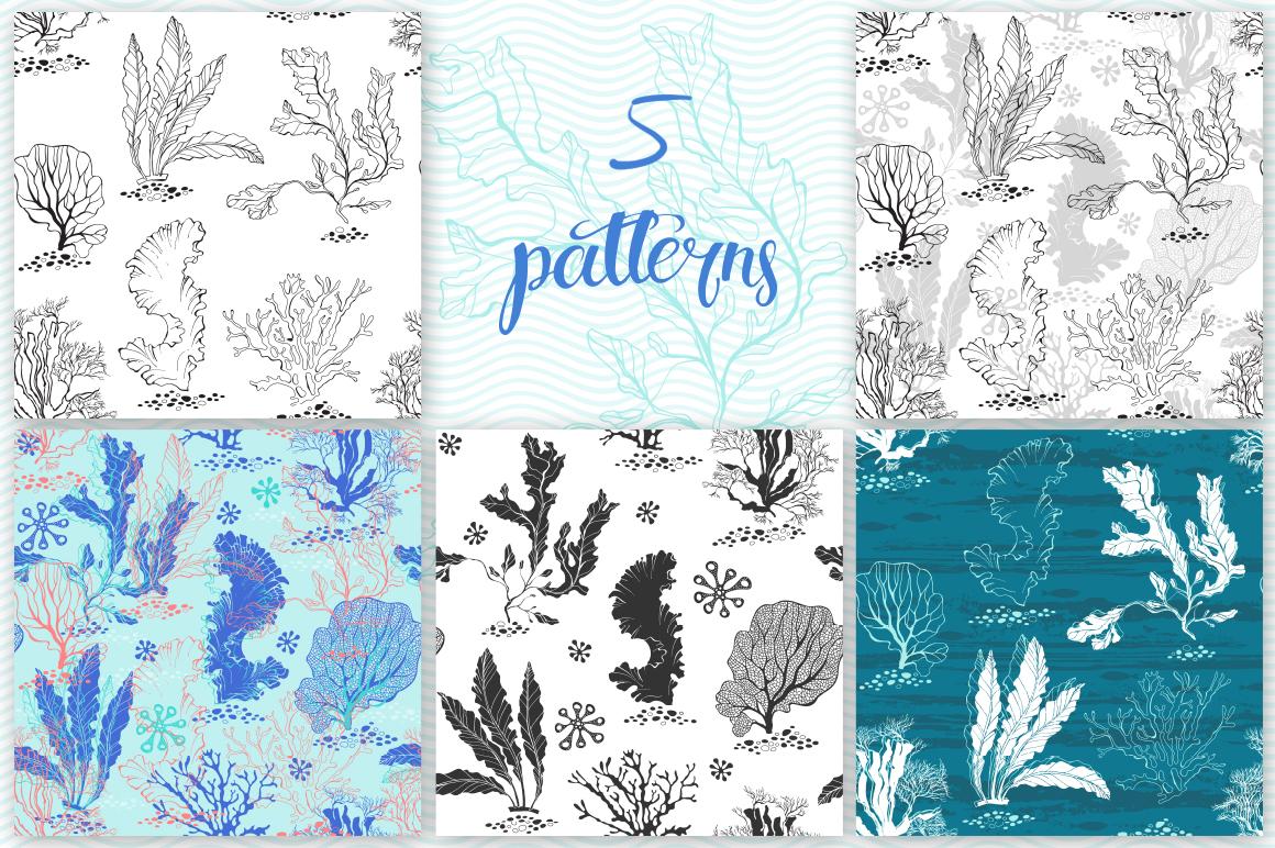 Underwater plants. Graphic set. example image 2