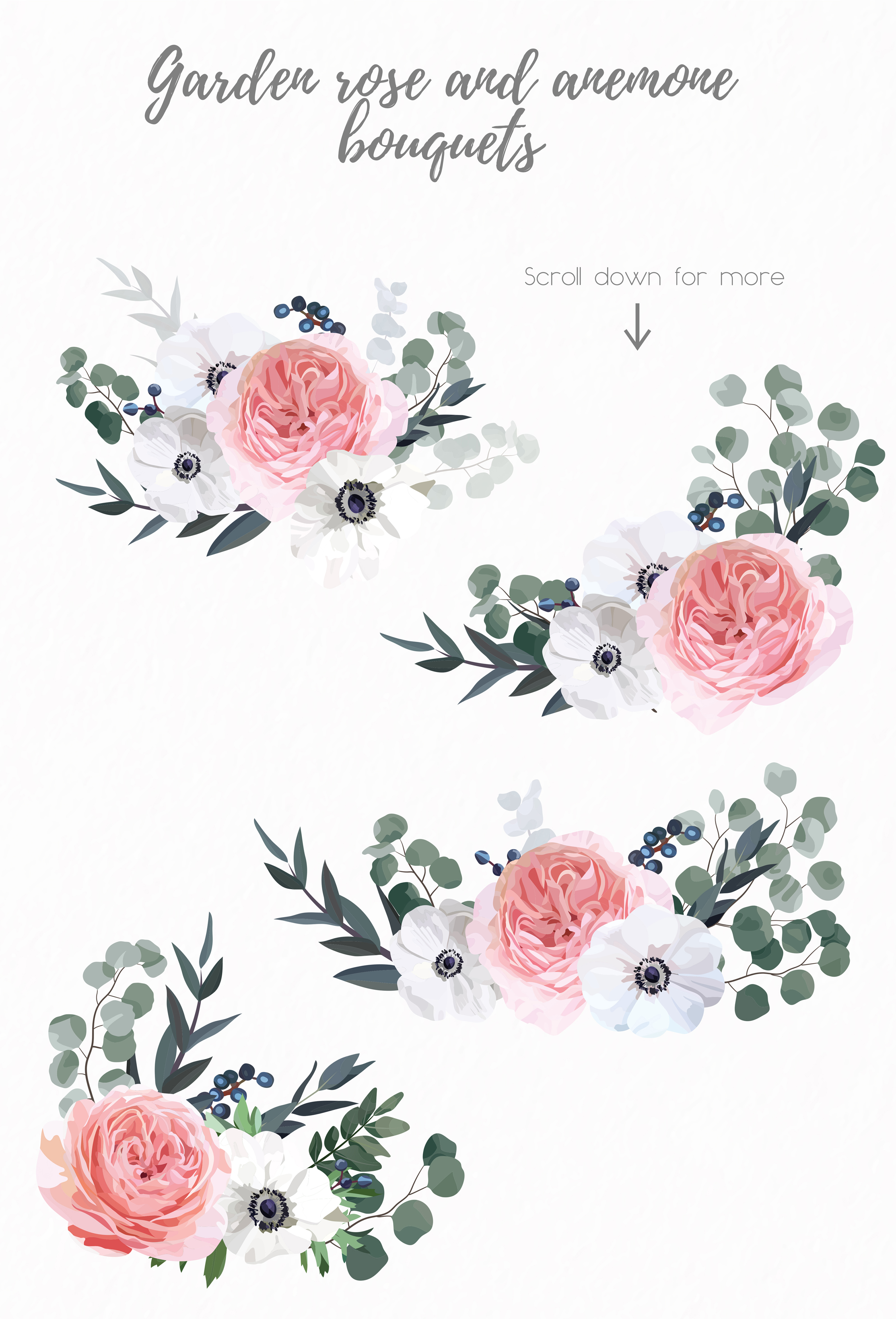 Garden Rose and Anemone - floral vector set example image 7