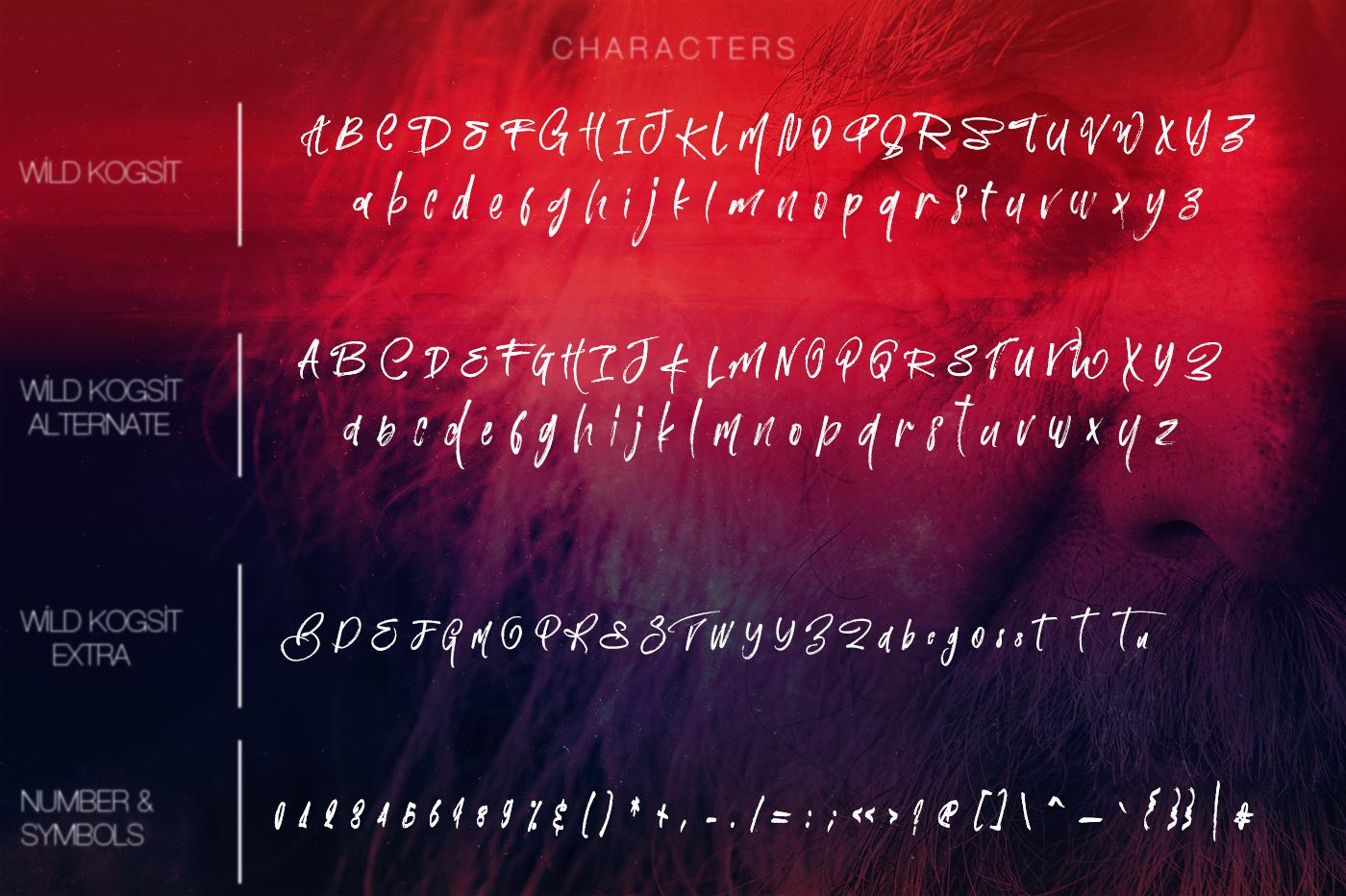 Wild Kogsit Artistic Script Font example image 12
