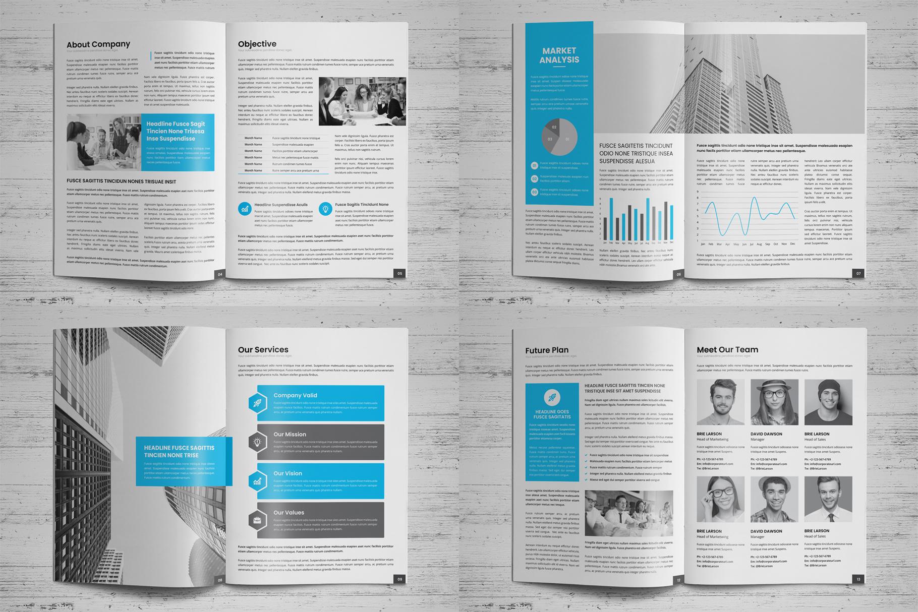 Company Profile Brochure v10 example image 14