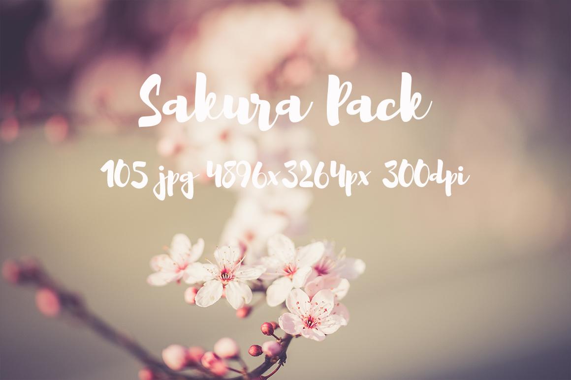 sakura photo pack example image 8