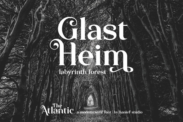 The Atlantic//Modern Serif Font example image 3