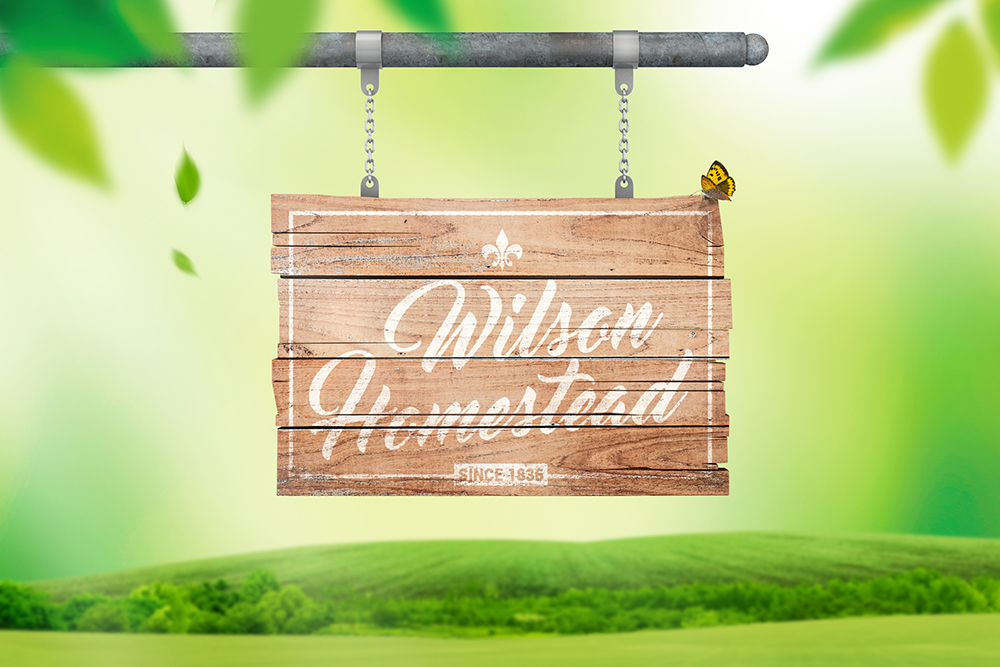 Hanging Wooden Sign Mockup example image 3