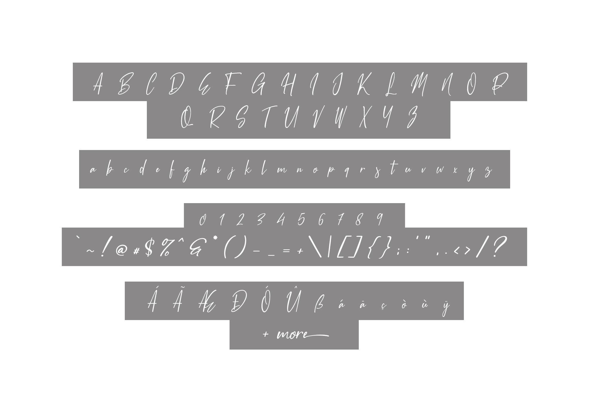 White Pen Script example image 6