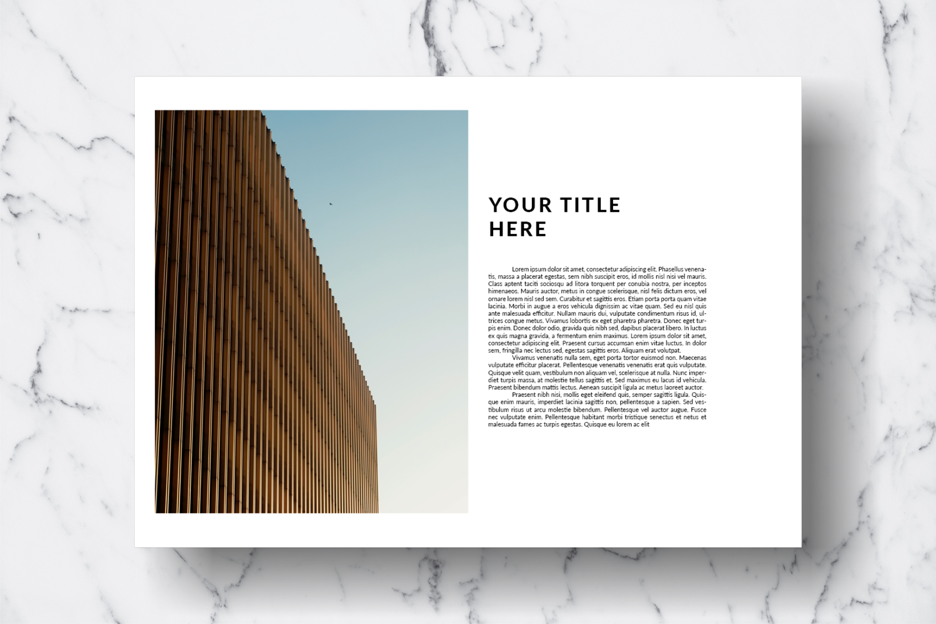Magazine Template Vol. 13 example image 5