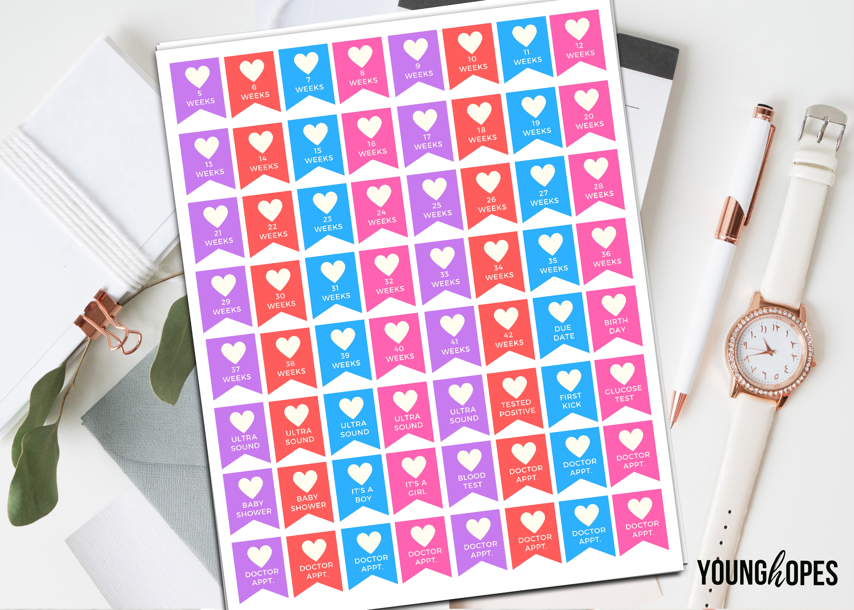Weekly Pregnancy Planner Stickers Printable Stickers example image 1
