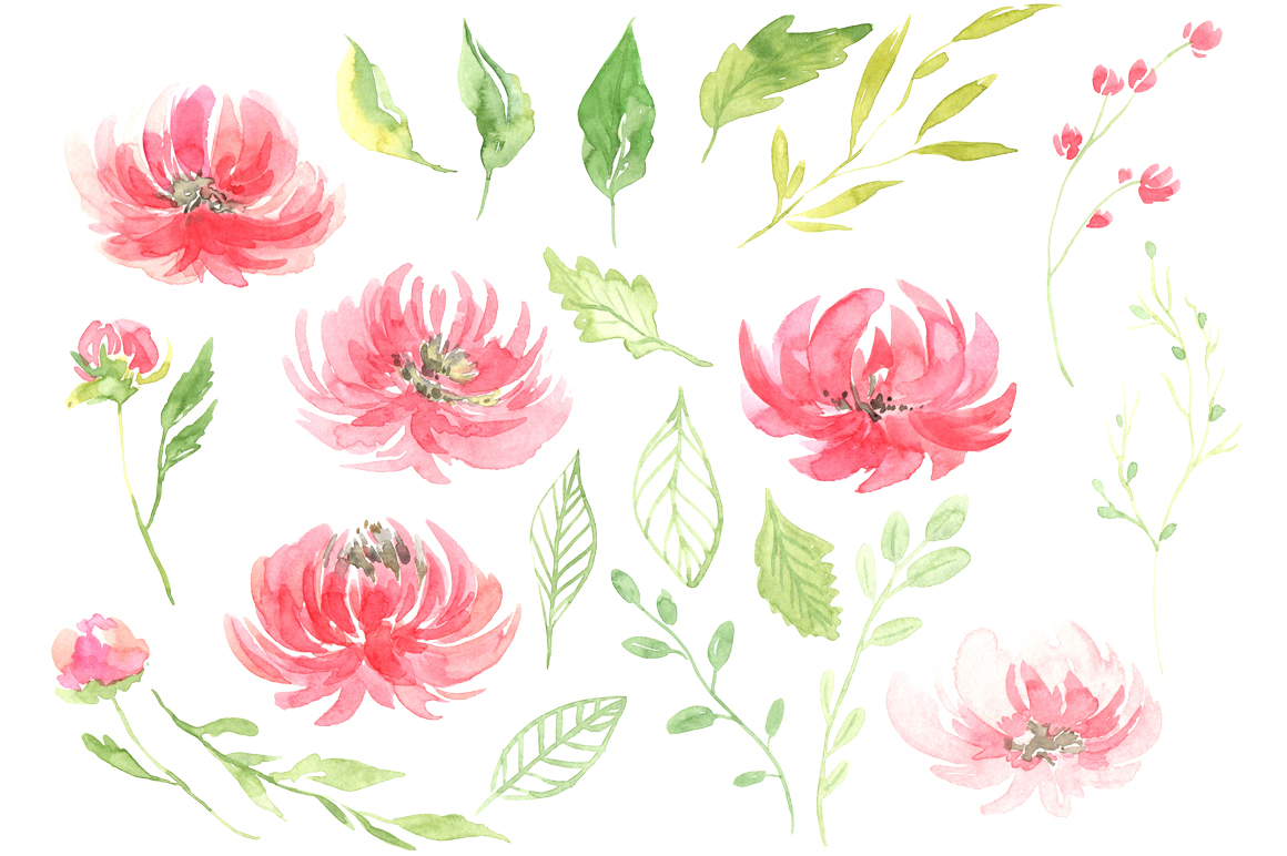 Watercolor peony flowers leaves PNG example image 2