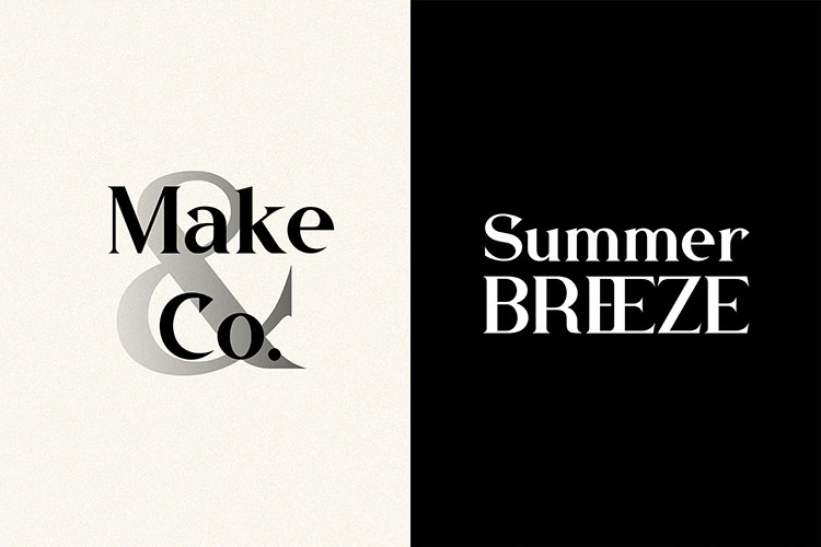 Buffallo Elegant Serif Font example image 9