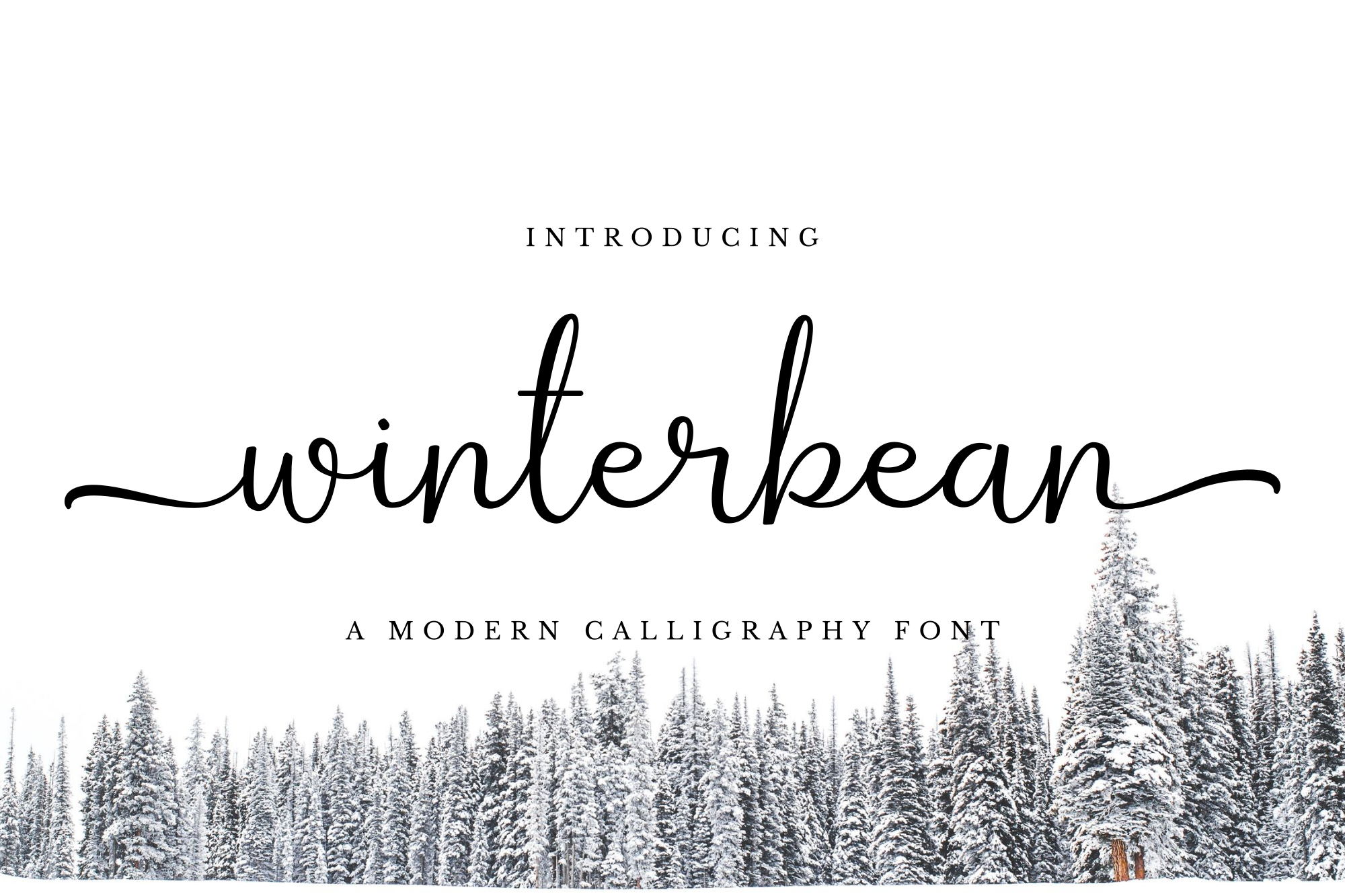 Winterbean example image 1