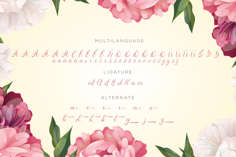 Senoritta - Beautiful Script Font example image 11