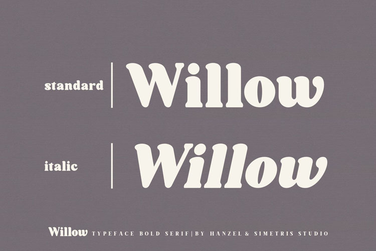 Willow. Typeface Bold Serif example image 5