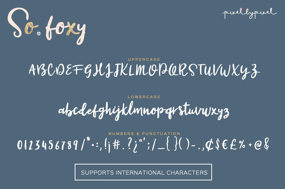 So Foxy Script Font example image 5