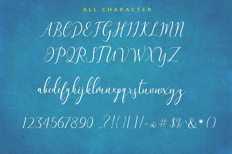 The Himalaya | beautiful handwriten example image 9