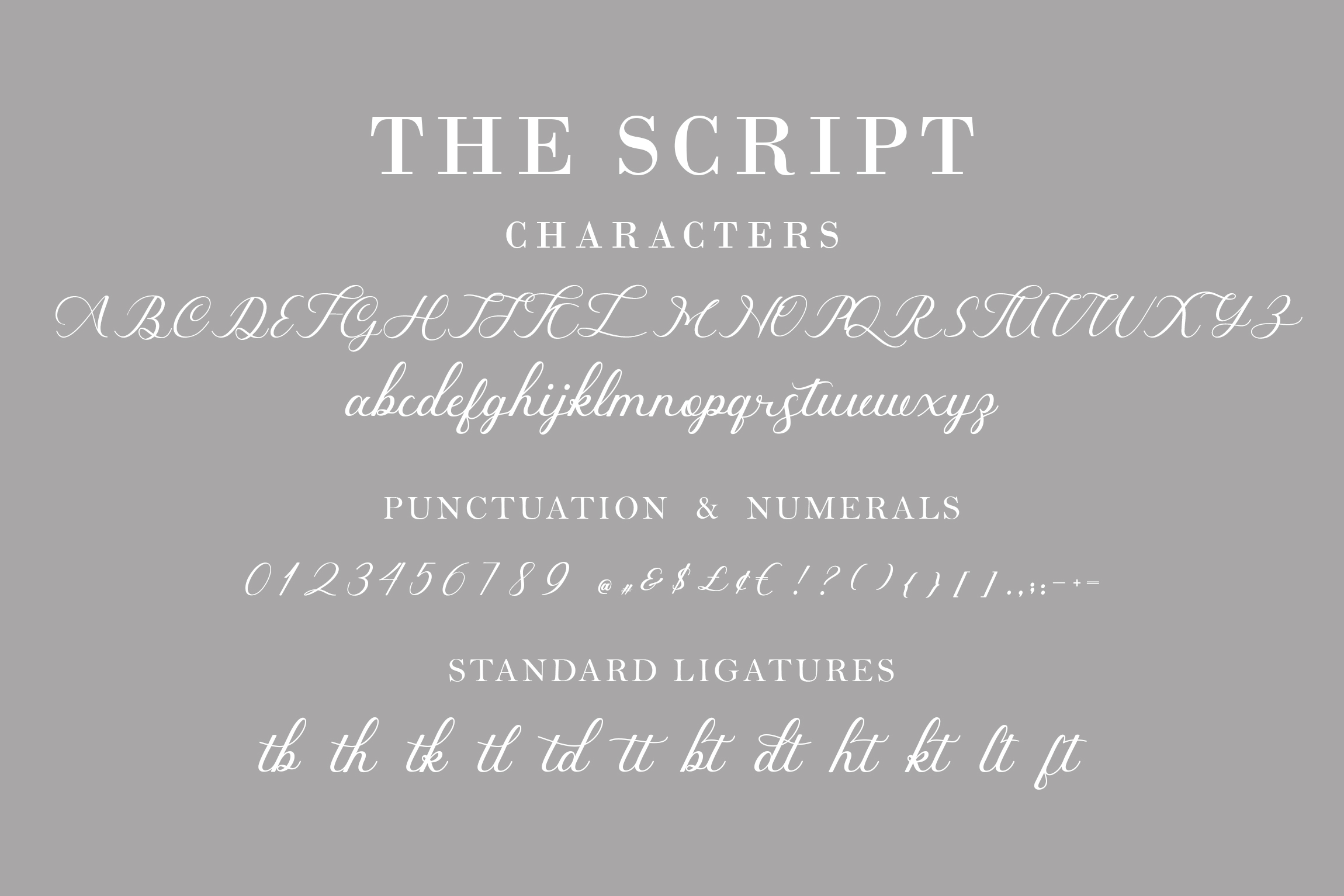 indiana Script Font example image 4