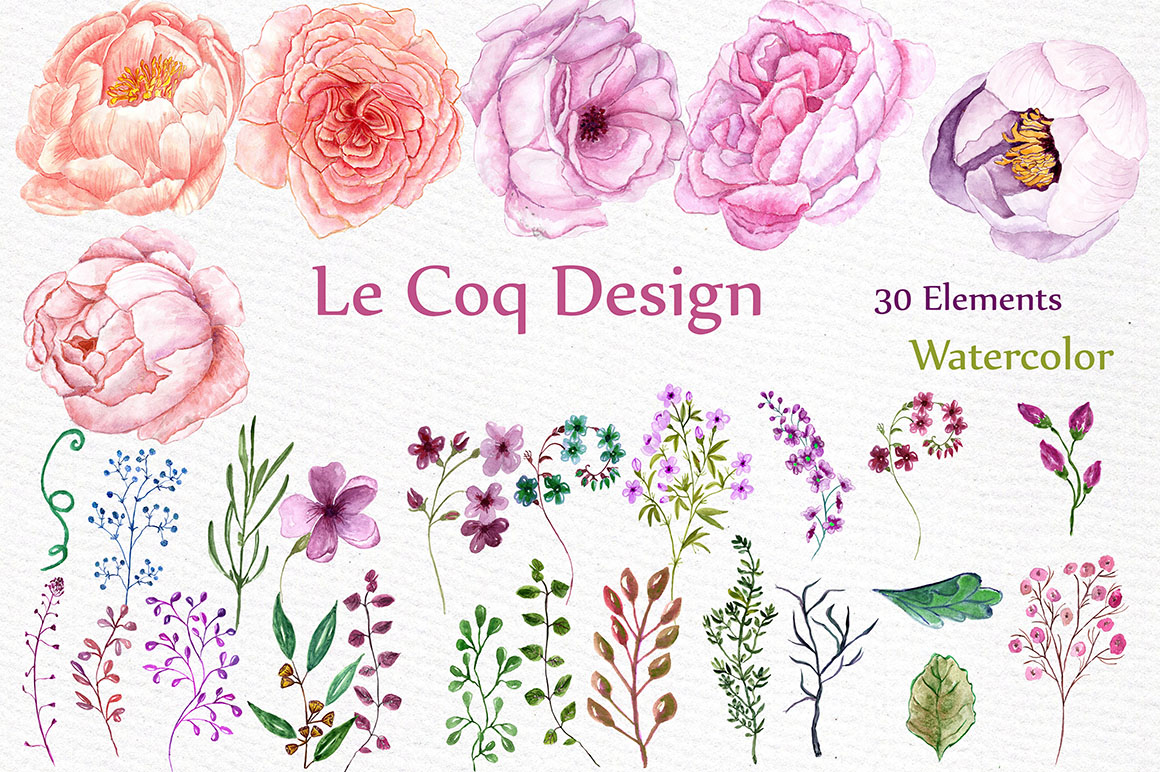 Watercolor peonies flower clipart example image 2