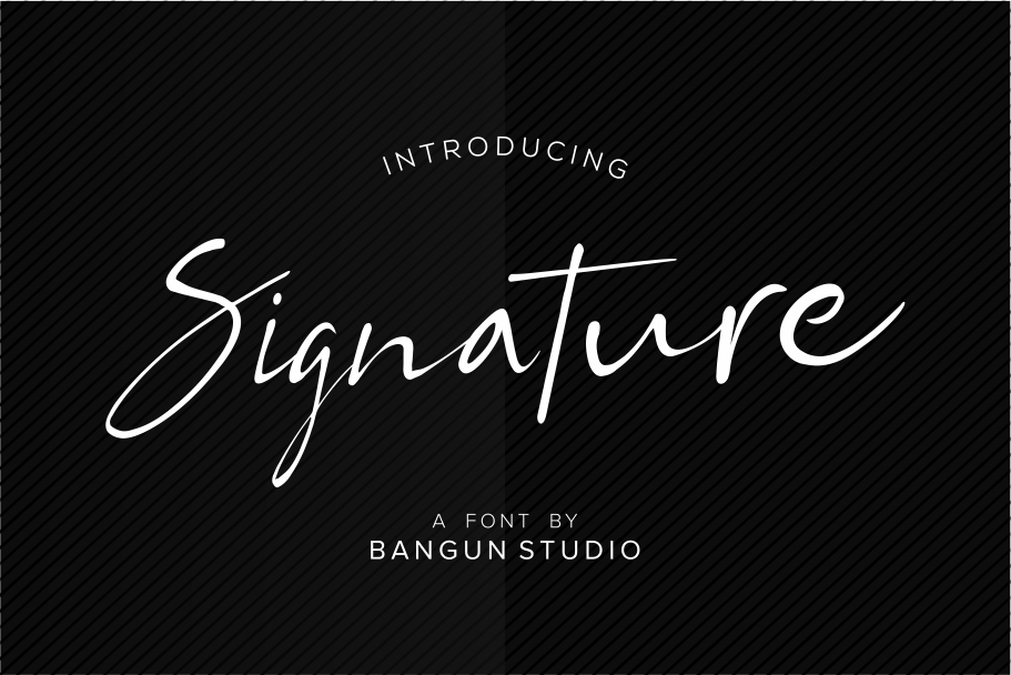 BS Signature example image 1