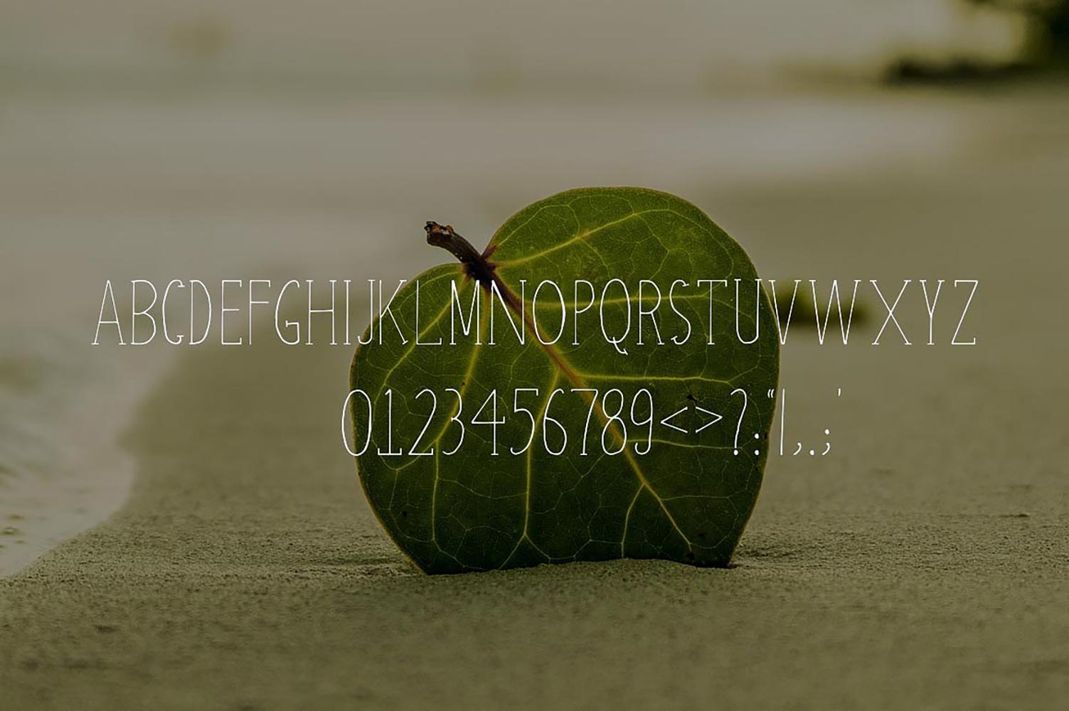 Atifa Serif Font example image 2