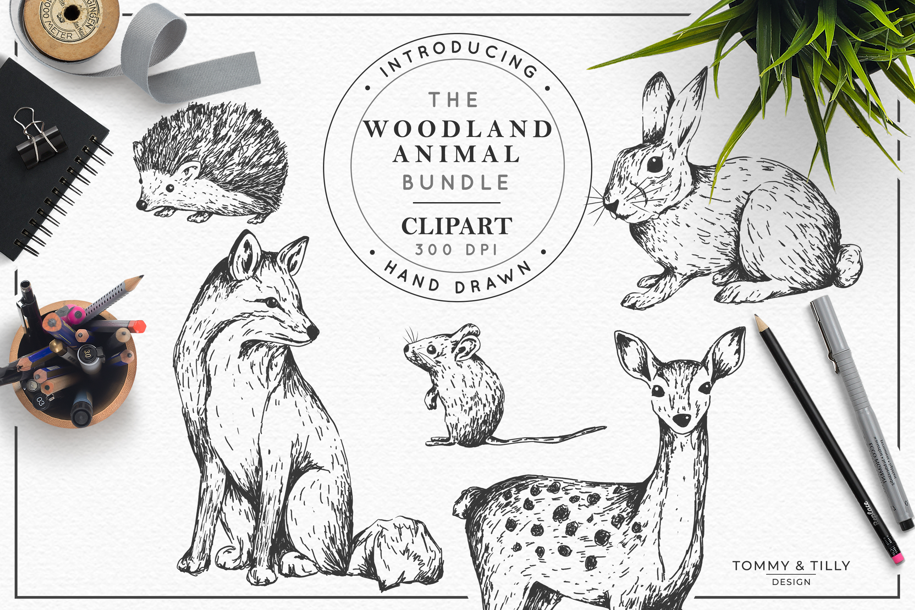 Hand Drawn Woodland Animals Bundle | High Quality Clipart | example image 1