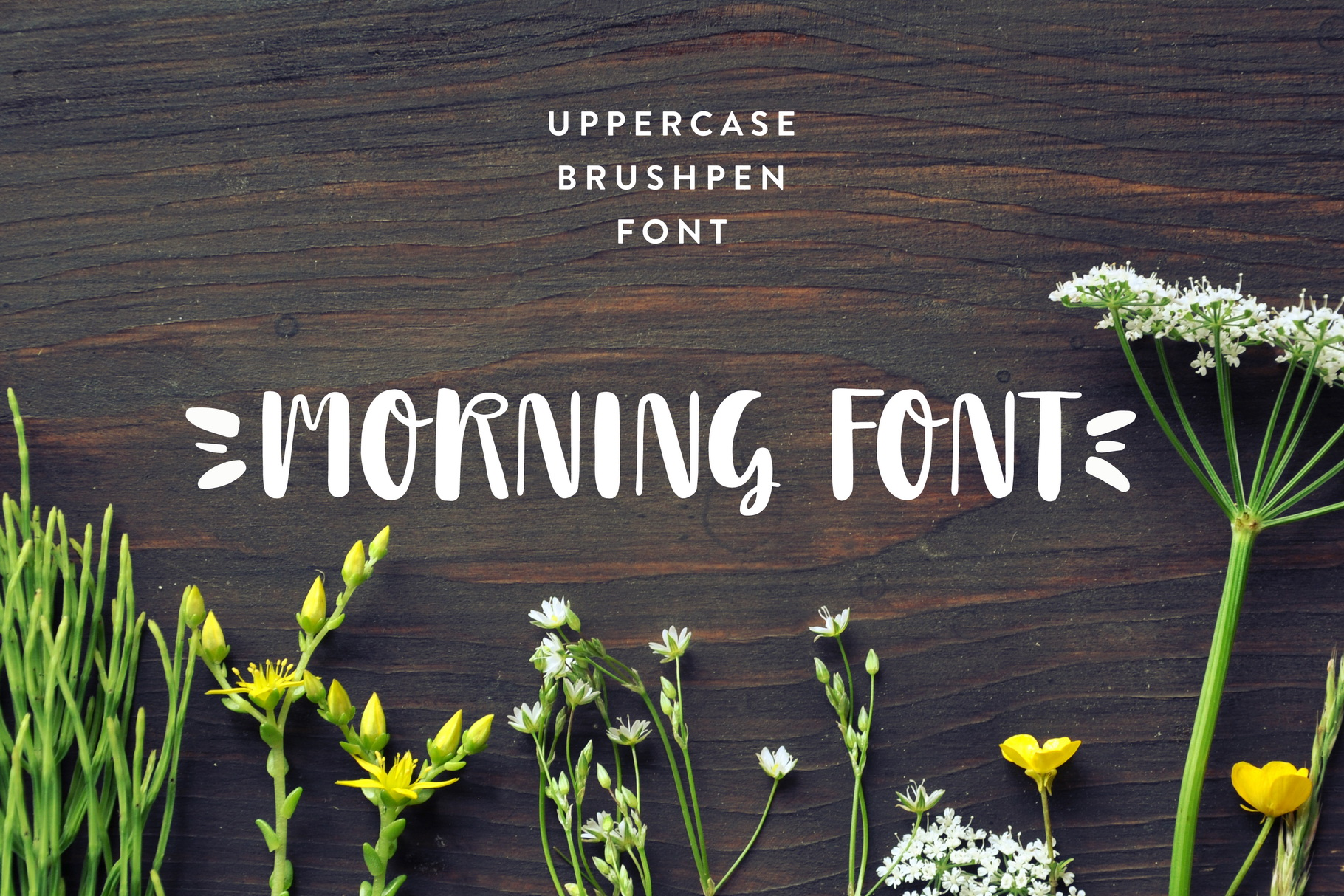 Morning Font example image 1