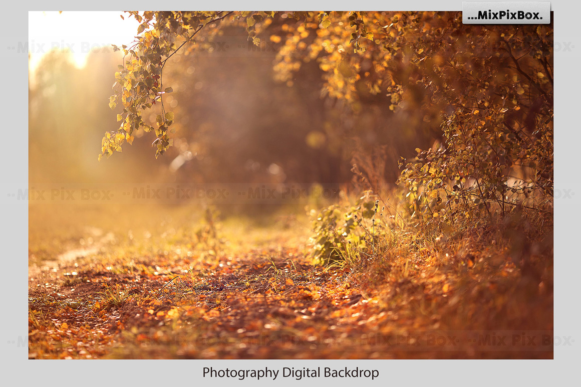 Golden Autumn Backdrop example image 2