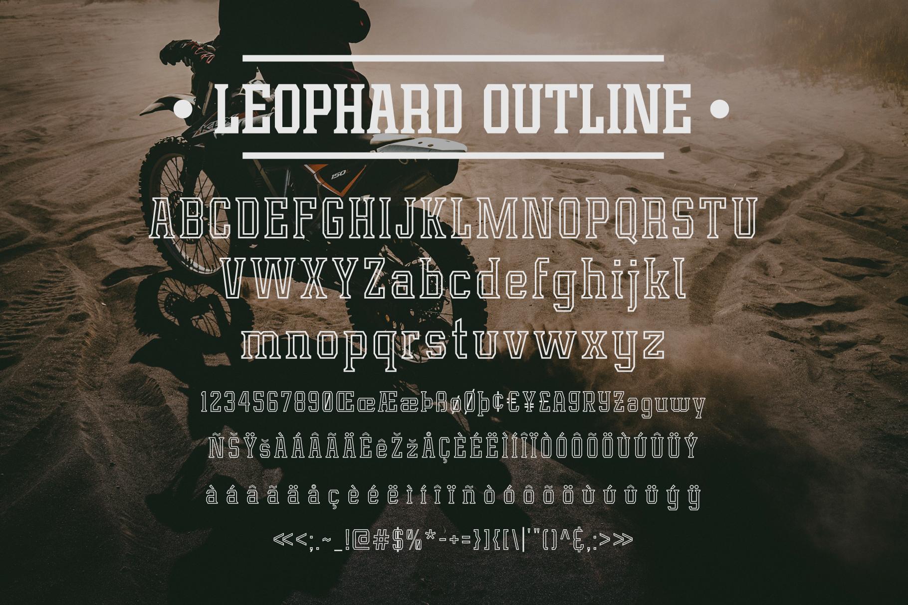 Leophard Font Family example image 5