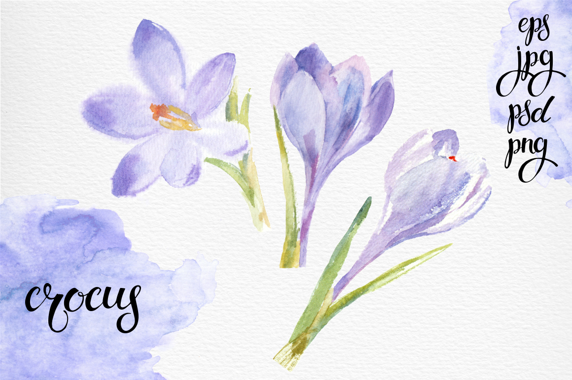 Spring flowers. Watercolor set. example image 5