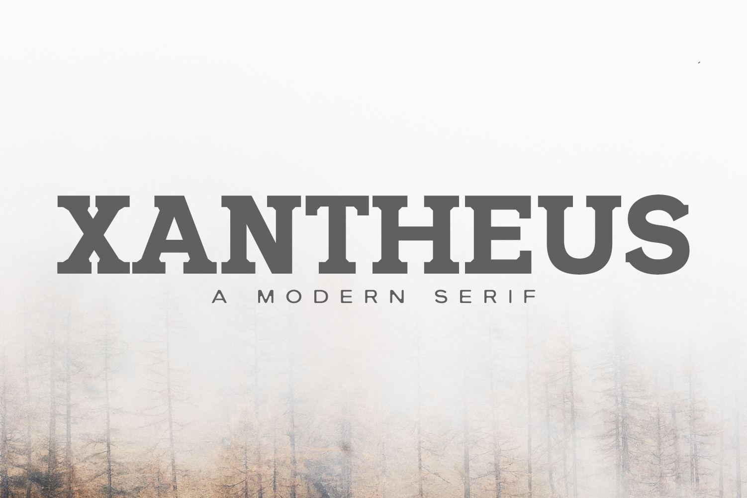 Xantheus Serif Font Family example image 1