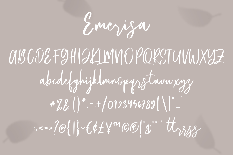 Emerisa Modern Brush Script example image 2