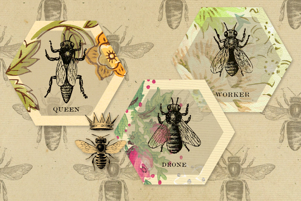 Vintage Honey Bee Digital Paper example image 4