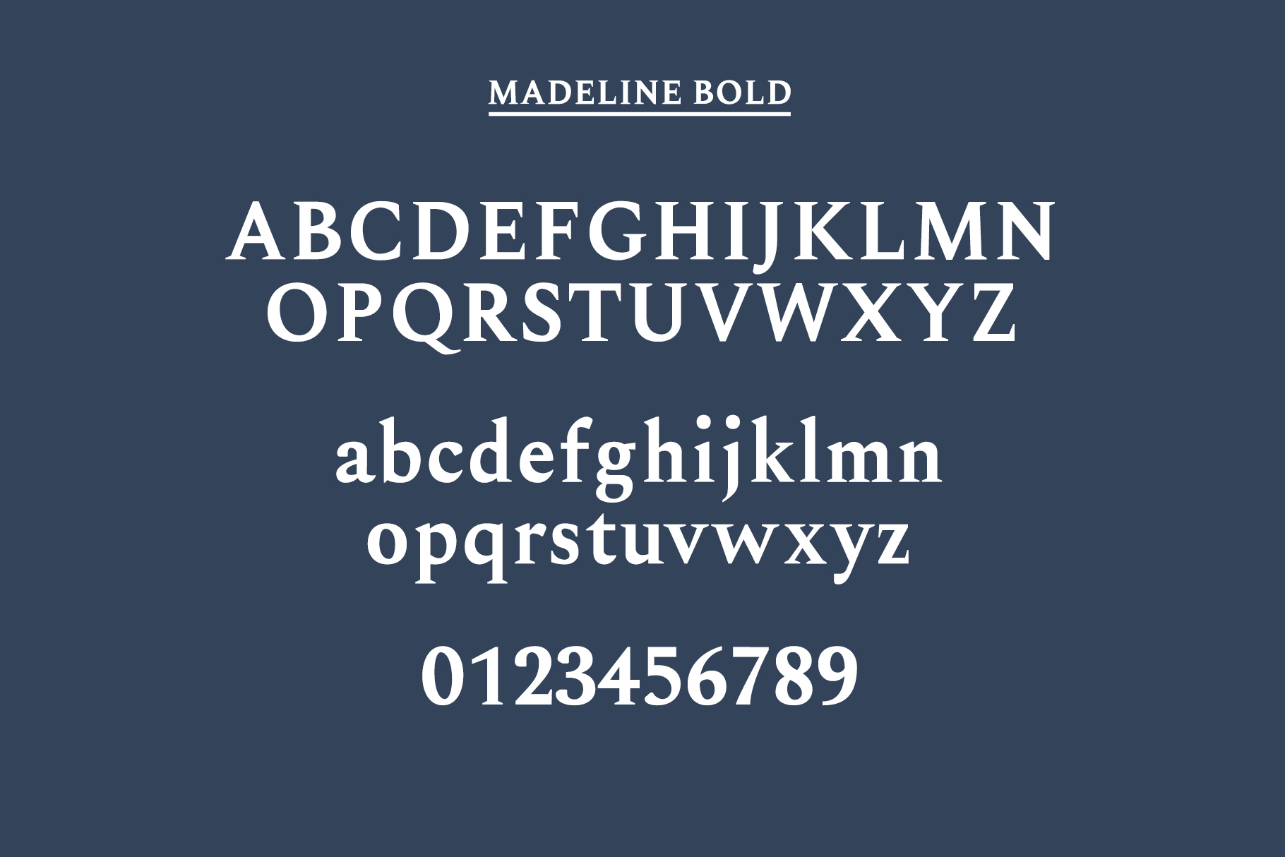 Madelin Serif Font Family Pack example image 11