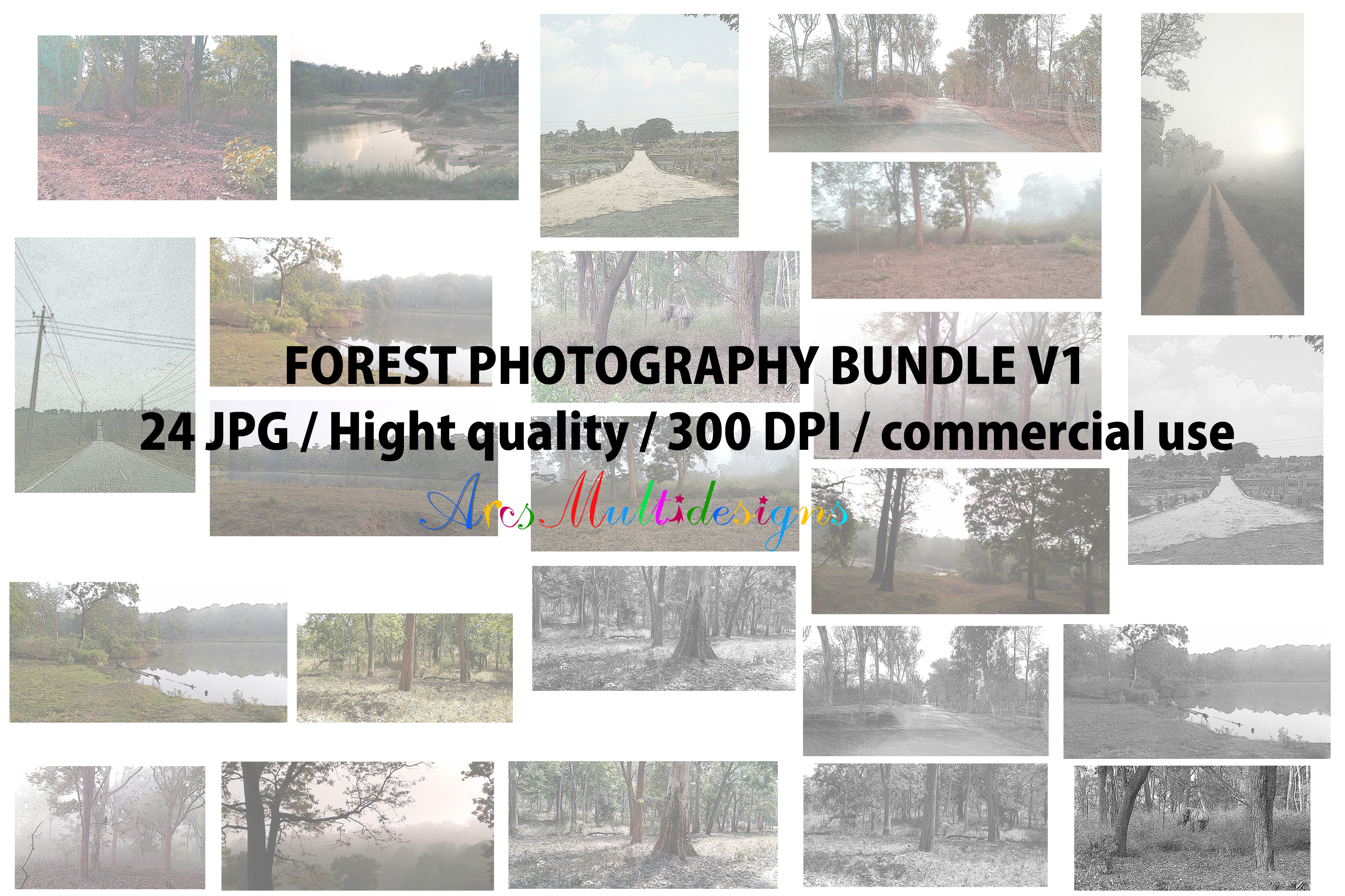 Forest pack photograhpy, commercial use and personal use example image 1