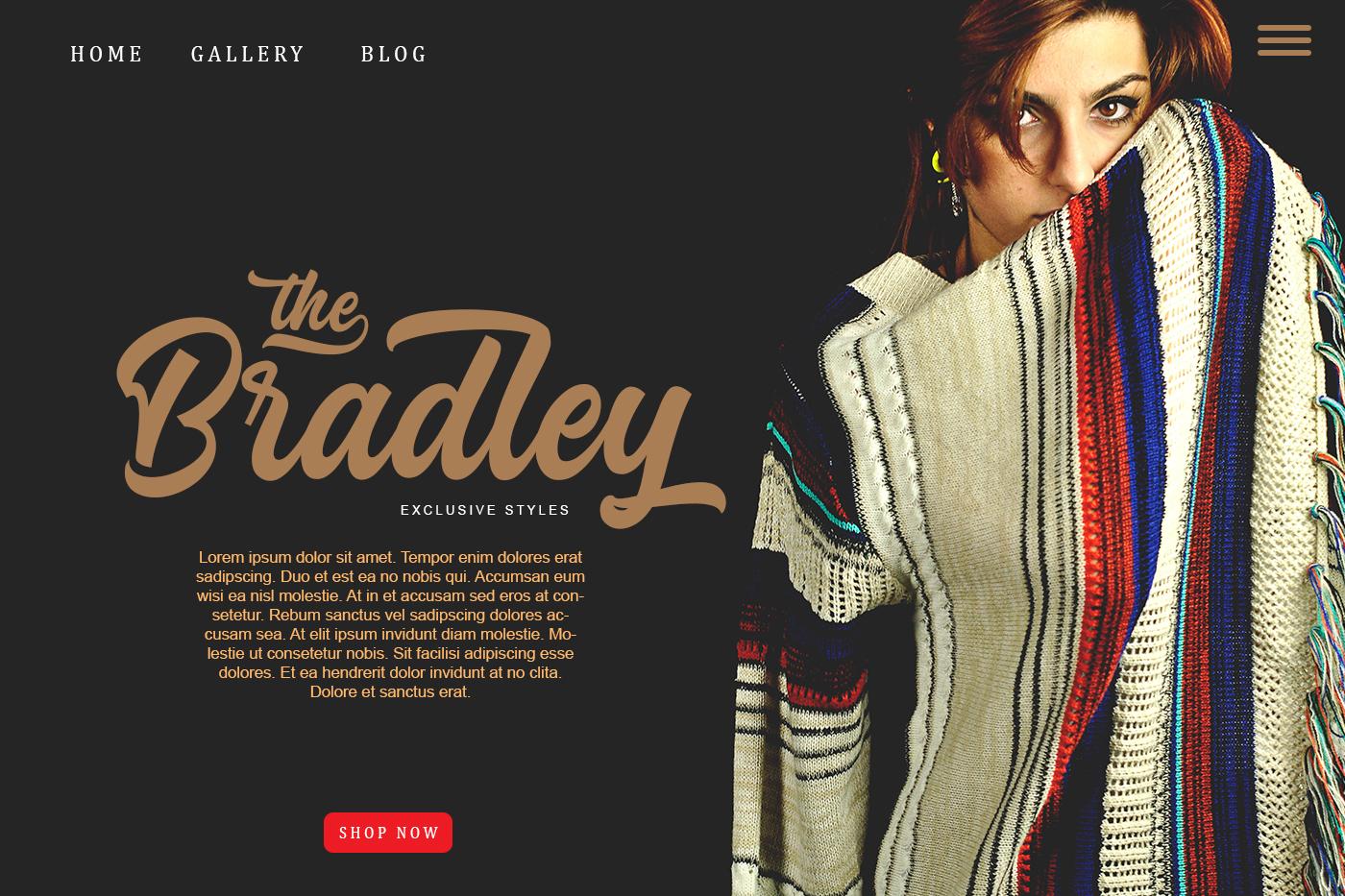 Bradley Typeface example image 4