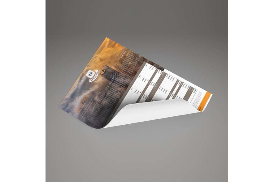 Company Balance Sheet A3 Template example image 6