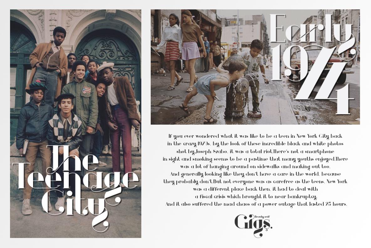Gigs Beauty Serif Font example image 12