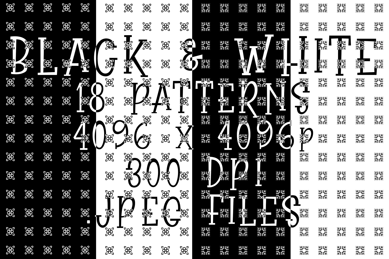 Black & White Elegance example image 1