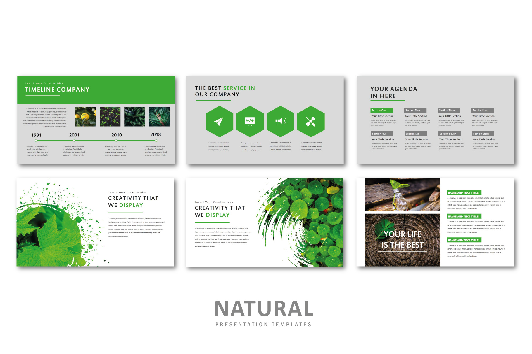 Natural PowerPoint Templates example image 4
