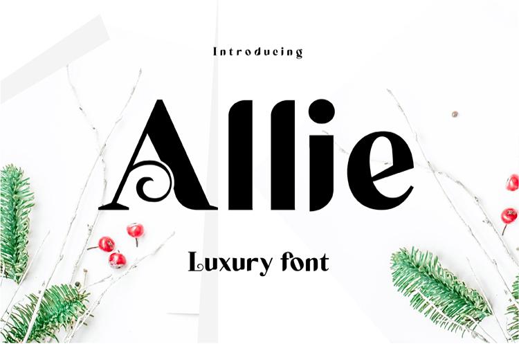 Allie example image 1