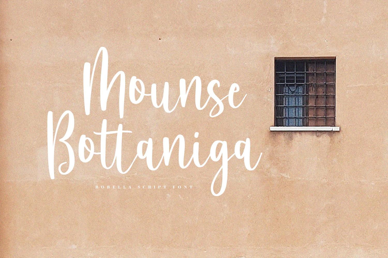 Robella // A Beauty Script Font example image 7