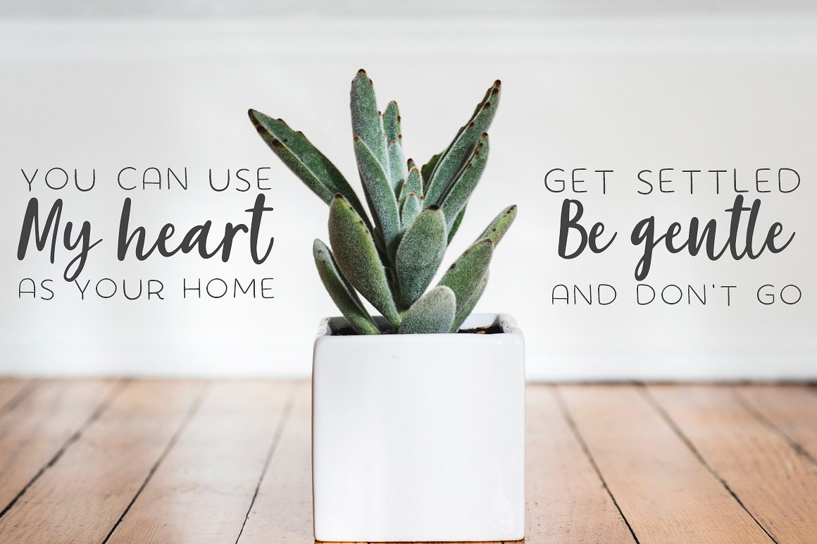 The succulent - font trio! example image 5