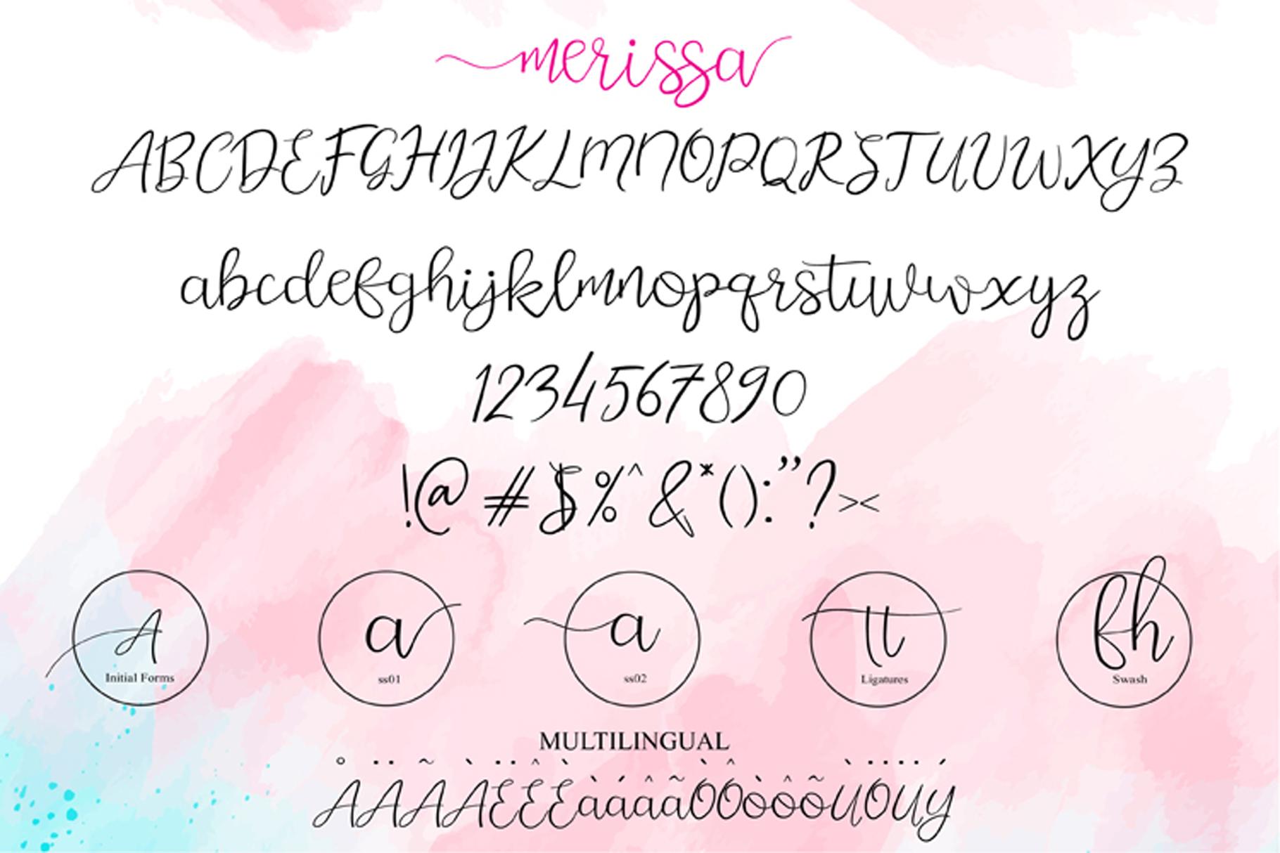 merissa example image 3