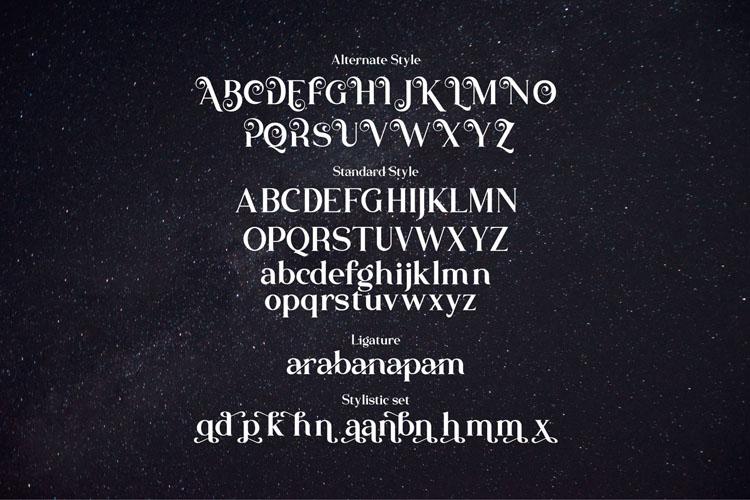 The Atlantic//Modern Serif Font example image 10