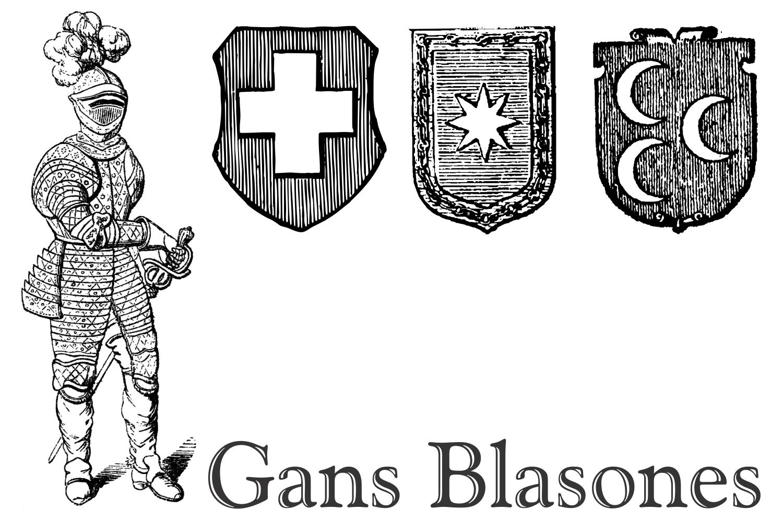 Gans Blasones (PACK) example image 3