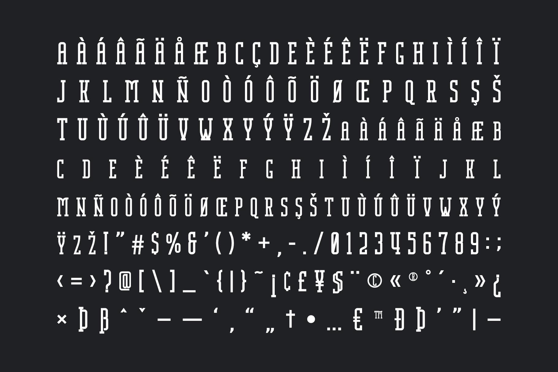 Nordin Slab - Condensed Slab Serif example image 8