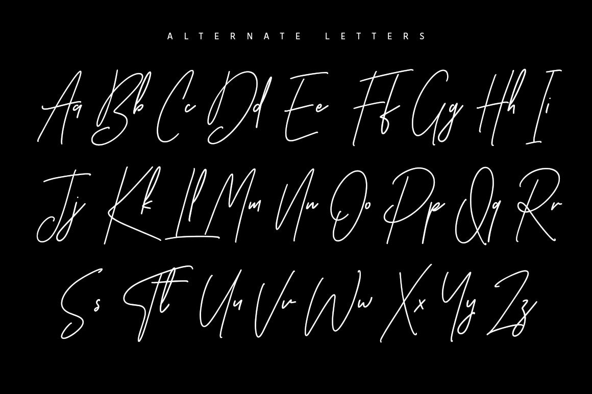 Ansterdam - Clean Signature Font example image 9